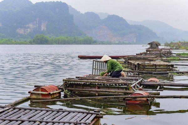 Thanh Hóa: Nhà máy nước sạch hoạt động trở lại sau 2 ngày dừng vì nguồn ô nhiễm