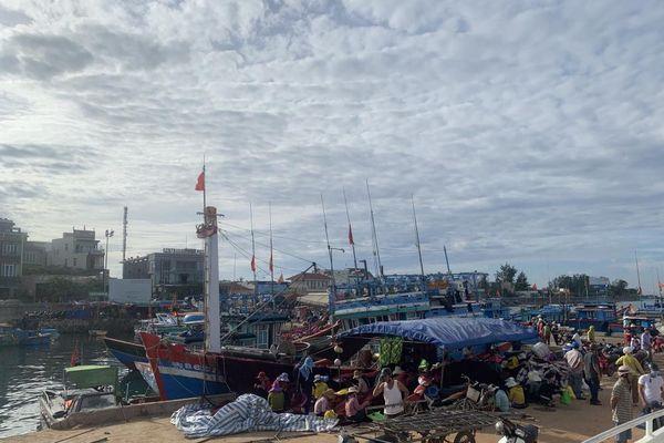 Quảng Ngãi: Đẩy mạnh phát triển hạ tầng du lịch