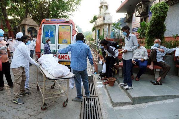 Thảm kịch COVID-19 ở Ấn Độ: 'Hãy giúp cha tôi chết được không?'