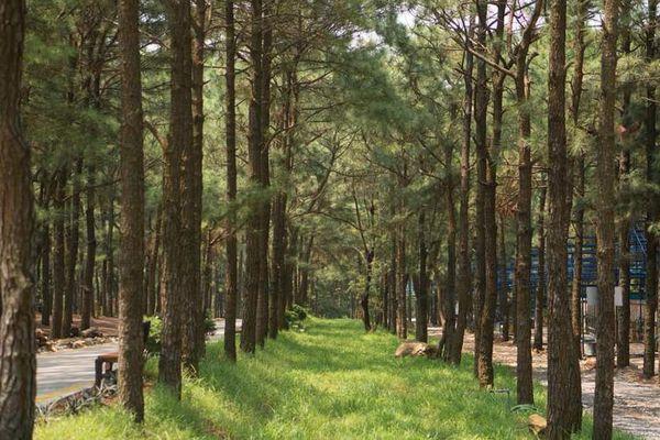 Ba địa điểm du lịch sinh thái quanh Hà Nội dịp nghỉ lễ