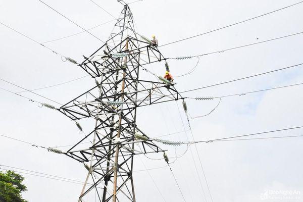 Công ty Điện lực Nghệ An: Diễn tập phòng chống thiên tai, xử lý sự cố an toàn lưới điện