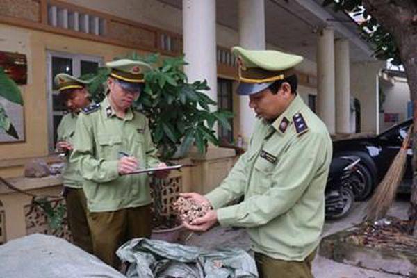 Quản lý thị trường Lạng Sơn: Ngăn chặn hàng tấn dược liệu nhập lậu