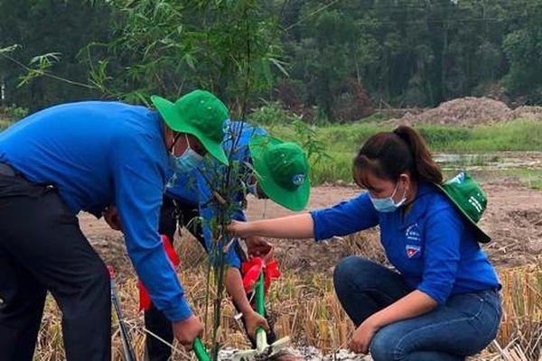 Đồng Tháp phát động chương trình trồng 1 tỷ cây xanh - Vì một Việt Nam xanh