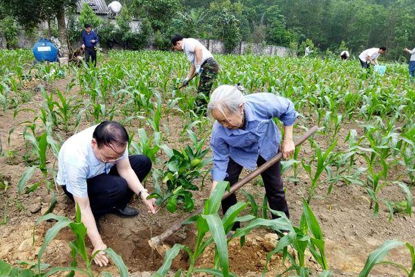 Người bạn đồng hành của nông dân Hạ Long