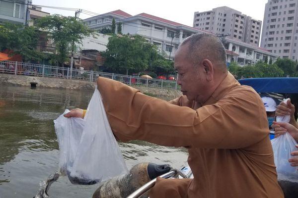 Chùa Long Hoa (quận 8, TP.HCM) thả cá phóng sanh