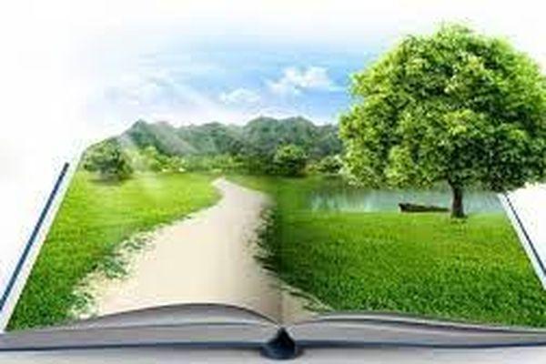 Sự cần thiết của kiểm toán môi trường và việc vận dụng kiểm toán môi trường vào Việt Nam hiện nay