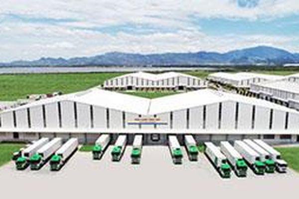 Logistics trọn gói cho nông nghiệp: THILOGI mang nông sản Việt ra thế giới
