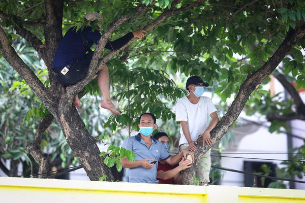 Khán giả Hòa Bình đội nắng, leo cây để được xem đội nhà đá hạng Nhì