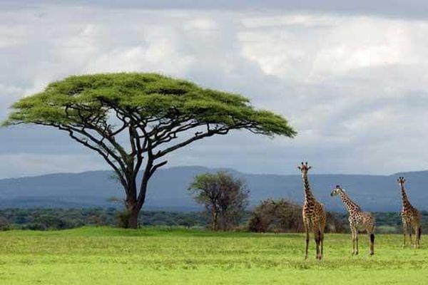 'Lặng người' trước cảnh đẹp mê hồn của thiên nhiên trên toàn Trái đất
