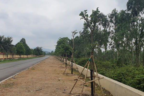 Nghệ An: Công an điều tra hành vi hủy hoại tài sản của 2 cán bộ quản lý rừng