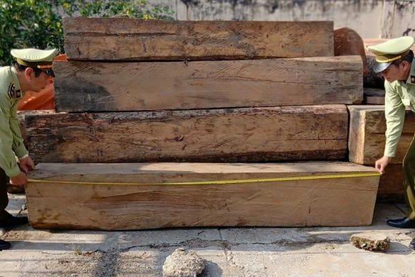 Thu giữ 9,21m3 gỗ lậu các loại tại Tiền Giang