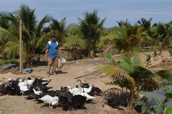 Lão nông làm kinh tế giỏi tại vùng biên Ia Rvê