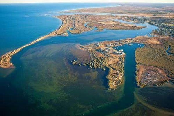 Khám phá vẻ bí ẩn của Vịnh Shark - miền Tây Gascoyne, nước Úc