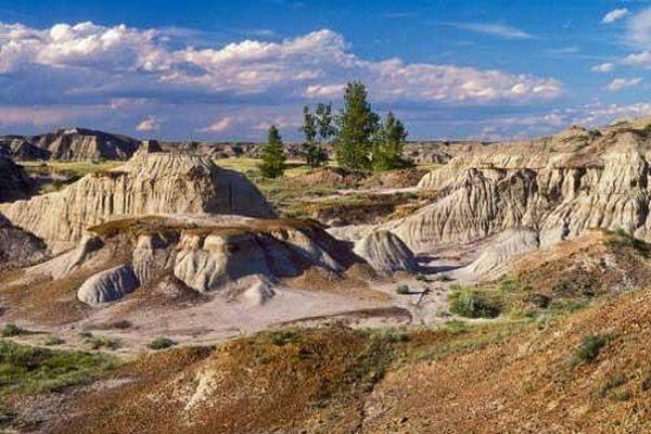 Chiêm ngưỡng công viên hóa thạch khủng long lớn nhất thế giới