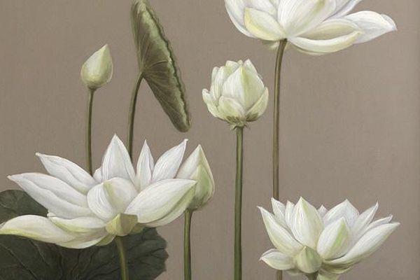 Dành tặng 108 bức tranh sen của các họa sĩ nổi tiếng Việt Nam cho tăng ni, phật tử