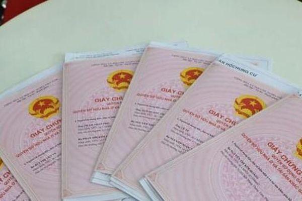 Bình Phước: Hàng lãnh đạo, cán bộ huyện lĩnh án vì cấp 8 'sổ đỏ' trùng cho kẻ lừa đảo