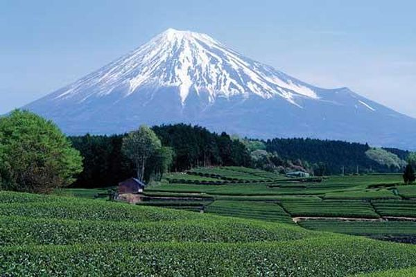 Núi Phú Sĩ - Ngọn núi nổi tiếng và cao nhất Nhật Bản