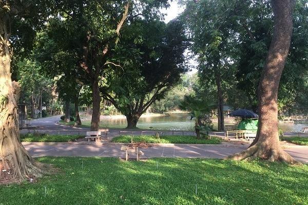Hà Nội, công viên vắng vẻ, người dân ra vườn hoa thể dục