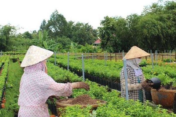 Hòa Bình: Số hộ gia đình văn hóa ngày càng tăng tại huyện Lạc Thủy