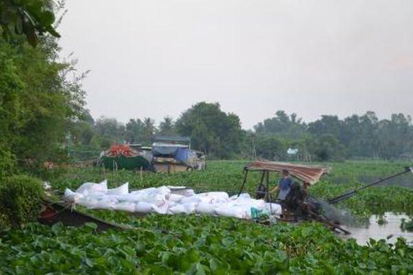 Vụ 'Ô nhiễm nghiêm trọng sông Vàm Cỏ Đông': Sở TN&MT Tây Ninh nói gì?