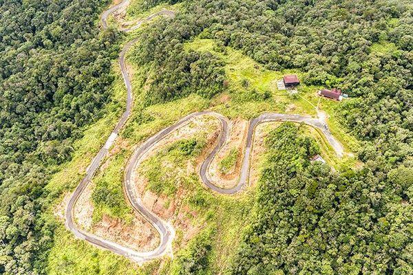 Đầu tư bảo vệ và phát triển rừng