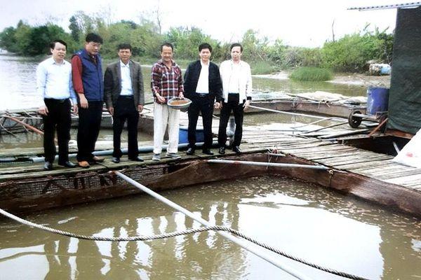 Đảng ủy xã Vũ Đoài tích cực lãnh đạo phát triển kinh tế
