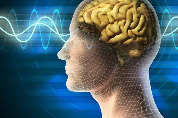 Bảy phương pháp giúp não chậm lão hóa