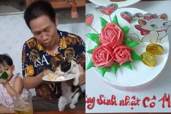 'Cô' mèo số hưởng được tổ chức sinh nhật, 'cả thế giới' ghen tỵ