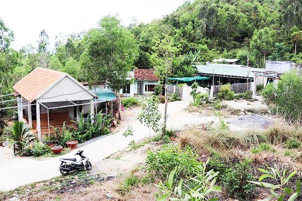Ninh Hòa: Xử lý 6 căn nhà xây dựng trái phép trên đất rừng