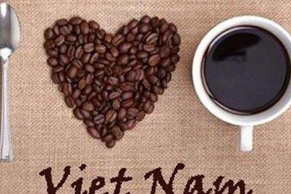 Giá cà phê hôm nay 15/5: Giảm sâu theo xu hướng chung; Xuất khẩu cà phê Việt Nam giảm về số lượng, tăng về giá trị