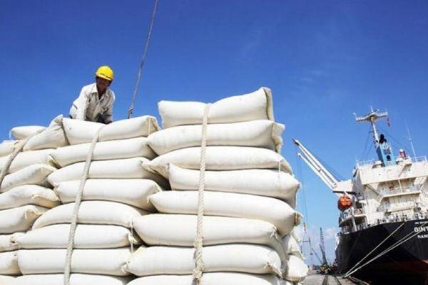 Giá gạo Việt Nam tăng cao hơn Thái Lan trong năm 2021