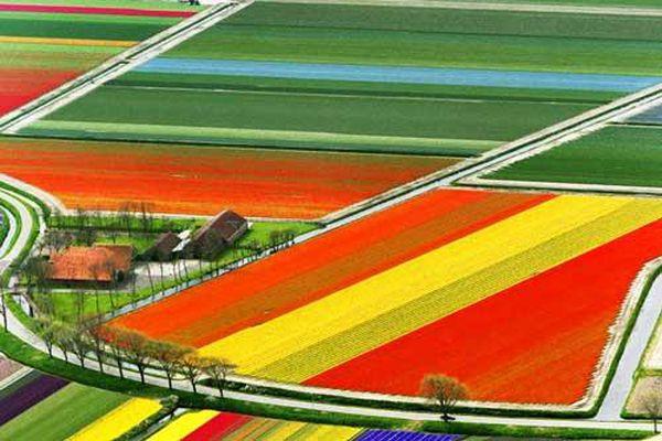 Phong cảnh thiên nhiên thế giới 'khoe' sắc màu rực rỡ