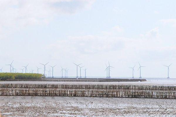 Hậu Giang sắp có dự án điện gió hơn 3.200 tỷ đồng