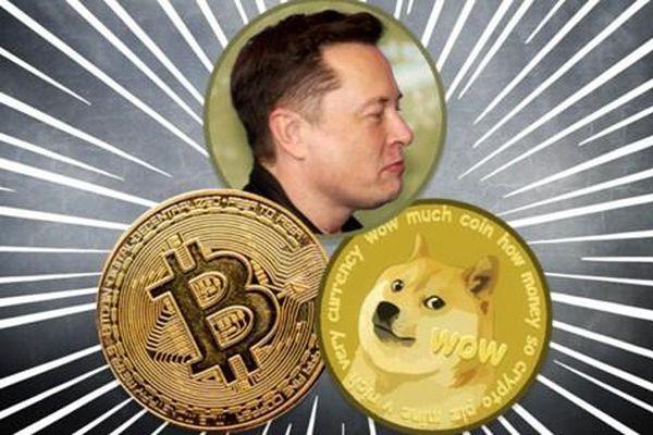 Giá Dogecoin, Bitcoin có đang bị thao túng?
