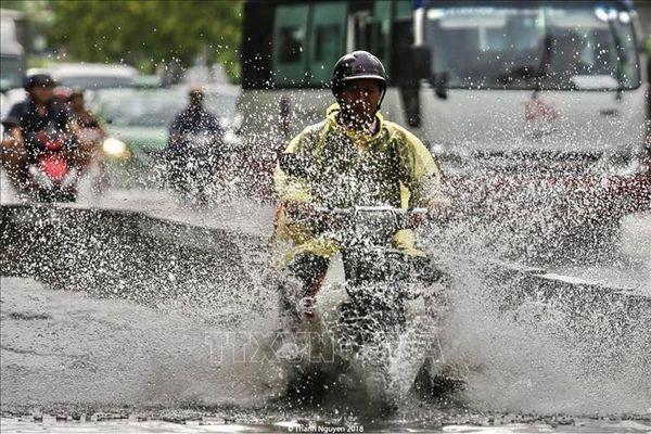 TP Hồ Chí Minh: Người dân cần đề phòng lốc, gió giật mạnh và mưa to