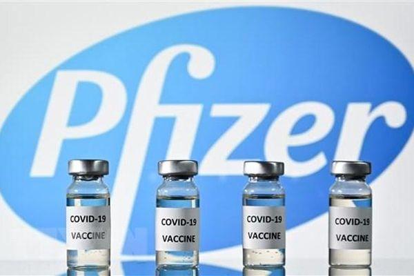 Việt Nam sẽ có 31 triệu liều vaccine của Pfizer vào quý 3-4/2020