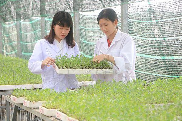 Khoa học công nghệ - nền tảng để kinh tế nông nghiệp bứt phá