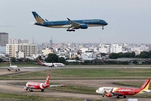 Máy bay không thể cất cánh vì đường băng có nhiều chim én đậu