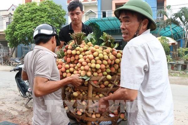 Hỗ trợ tiêu thụ sản phẩm nông sản của địa phương có sản lượng lớn