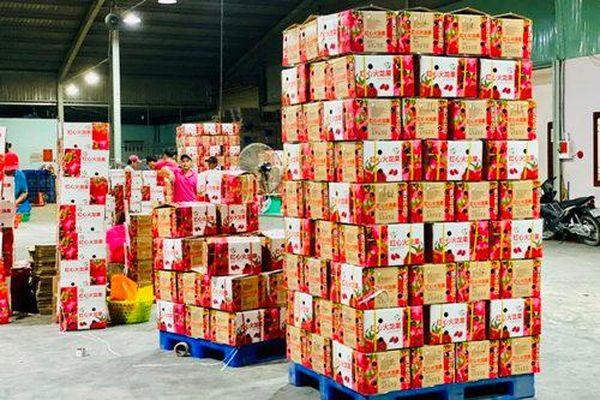 'Mở cửa' để nông sản thuận lợi xuất khẩu vào thị trường Trung Quốc