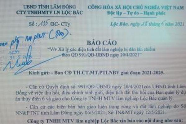 Hơn 95 ha đất bị lấn chiếm, xây dựng trái phép ở Lâm Đồng