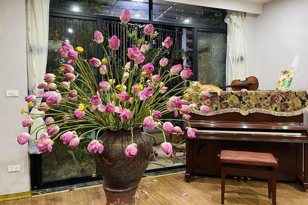 Dân mạng choáng váng với bình hoa sen kích thước 'khổng lồ' bằng cả chiếc đàn piano, đến khi hoa nở mới thực sự choáng ngợp