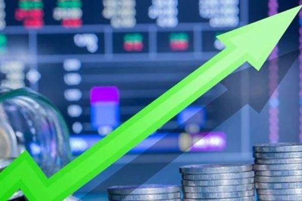 Cổ phiếu công ty dược Ấn Độ tăng giá 7700% trong vòng 7 tháng