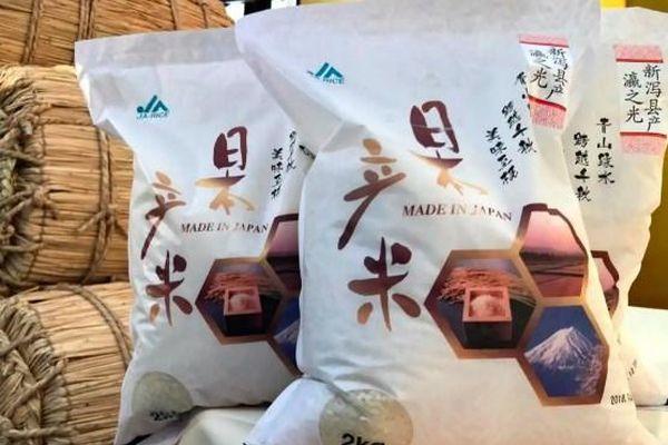 Gạo Nhật Bản chuyển hướng sang thị trường Trung Quốc