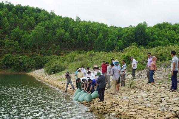 Minh Hóa: Thả hơn 13.000 con cá giống tái tạo nguồn lợi thủy sản