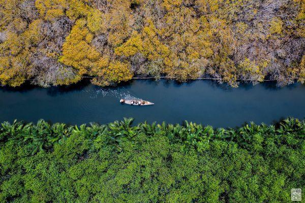 Ít ai biết ở Huế có một cánh rừng rất 'tình và thơ' có thể làm bạn 'quên lối về'