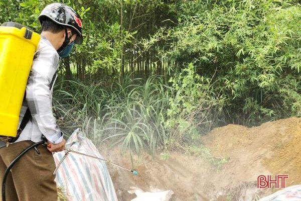 Nghi Xuân tiêu hủy 35 con lợn nhiễm dịch tả lợn châu Phi