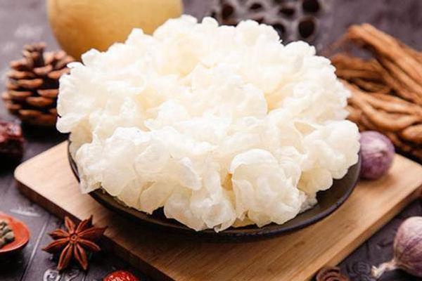 Loại nấm từng là cống phẩm cho vua chúa suốt 1.000 năm, nay được lập cả bảo tàng riêng