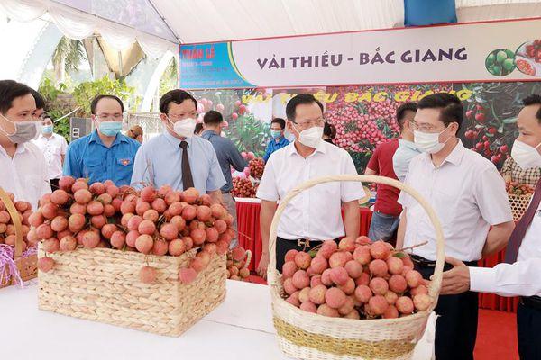Vải thiều Bắc Giang được đánh giá cao tại Tuần lễ giao thương, xúc tiến tiêu thụ nông sản đặc hữu