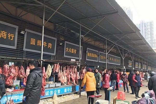 Phát hiện 47.000 động vật hoang dã bán ở chợ Vũ Hán trước khi Covid-19 bùng phát